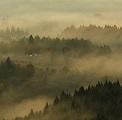 霧の夜久野高原③